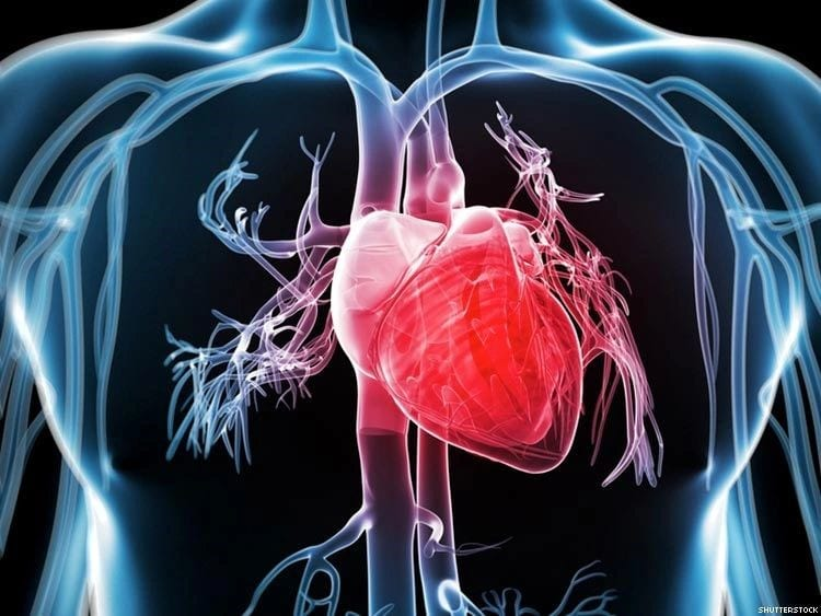 Cardiovascular Disease – A Look On How Alternative Medicine Can Help